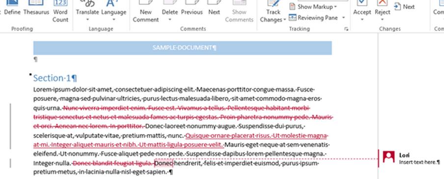 Track-Change-MS-Word-File-English-Editing